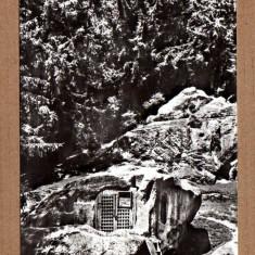 PUTNA CHILIA LUI DANIIL SIHASTRUL APROX 1965