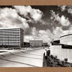 MAMAIA 1967