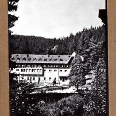 BORSEC HARGHITA VEDERE DIN STATIUNE APROX 1960