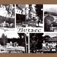 BORSEC HARGHITA APROX 1960