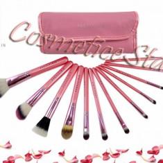 Set 12 pensule machiaj Fraulein Pink Candy + Borseta Gentuta Roz depozitare - Pensula machiaj Fraulein38