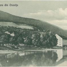IPV 184 ORAVITA
