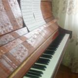 Pianina COHET