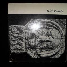 Iosif Fekete, album arta/sculptura) - Carte sculptura