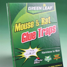 Capcana Antisoareci - Mouse & Rat Green Traps