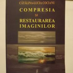 COMPRESIA SI RESTAURAREA IMAGINILOR - CATALINA LUCIA COCIANU - Carte design grafic