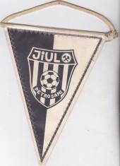 Fanion fotbal Jiul Petrosani foto