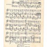 Partitura muzicala - ilustrata