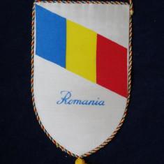 Fanion Masa Rotunda Timisoara - Fanion fotbal