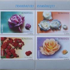 LOT TIMBRE ROMANIA - TRANDAFIRI 2004 - RO 0099