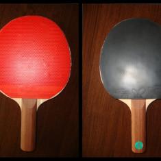 Paleta tenis de masa - Profesionala