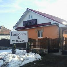 Panselute de vanzare