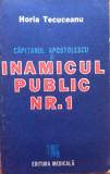 CAPITANUL APOSTOLESCU SI INAMICUL PUBLIC NR. 1 - Horia Tecuceanu