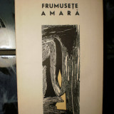 ION MAXIM - FRUMUSETE AMARA - Roman
