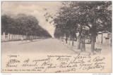B76362 Jassy Iasi Bulevardul Copou SUPERB ETAT Stare perfecta 1900