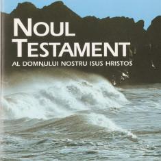 NOUL TESTAMENT SI PSALMII { TRADUCEREA DUMITRU CORNILESCU, 1924, CU TRIMITERI} - Biblia