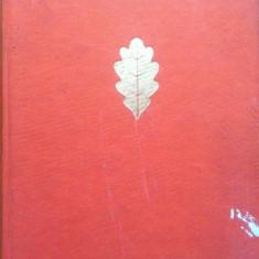 DIN STEJAR, STEJAR RASARE - Elsa Grozea - Carte Antologie