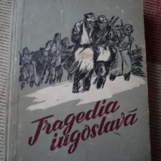 Tragedia iugoslava o maltev cartea rusa roman razboi ilustrata alb negru