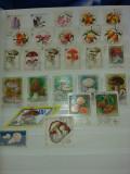Colectie flora fructe ciuperci