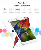 Geam iPad Air 1 2 Tempered Glass 0.3mm by Yoobao Original