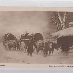 B76627 Romania theodor aman Car cu boi in zapada