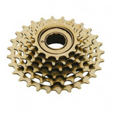 Grup 6 pinioane bicicleta - Piesa bicicleta