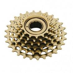 Grup 6 Pinioane - Viteze Bicicleta