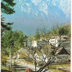 #carte postala(ilustrata)- BUSTENI-VEDERE