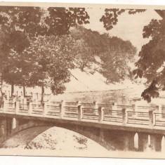 #carte postala(ilustrata)- CALIMANESTI-CACIULATA-Podul peste Olt - Carte Postala Oltenia dupa 1918, Necirculata, Printata