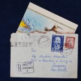 Plic Circulat Expres - Recomandat cu felicitare