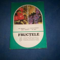 FRUCTELE SI SANATATEA GHEORGHE BADESCU - Carte Medicina alternativa