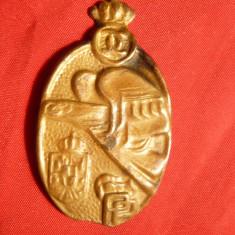 Insigna- Pentru Pregatirea Premilitara Carol II - lipsa ac