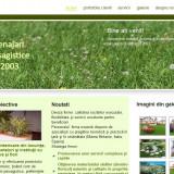 Site prezentare firma amenajari peisagistice gradini