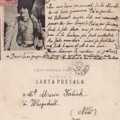 Tipuri, meserii - Cioban - clasica, 1905 - Carte Postala Transilvania pana la 1904, Circulata, Printata