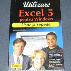 EXCEL 5, pentru Windows, manual de utilizare - Carte tehnoredactare, Teora