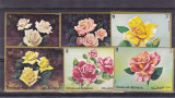 Trandafiri ,flora ,serie nedantelata ,Umm al Qiwain.