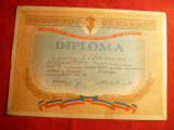 Diploma Canotaj Academic RPR -Fete seniori ,Flamura Rosie Bucuresti 1961