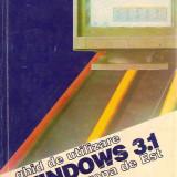 GHID DE UTILIZARE WINDOWS 3.1 pentru EUROPA DE VEST, 21