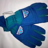 Manusi pt. ski, de iarna captusite Thinsulate NOI - Echipament ski