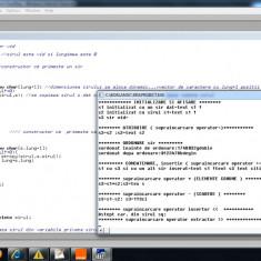 Proiect Programare C++ POO - Exemplu clasa generica pentru siruri - Solutii business