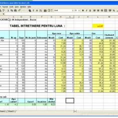Proiect Excel - Intretinere asociatie locatari - Solutii business
