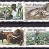 Bophuthatswana 1979 - Mi.no.51-4 neuzat - Timbre straine