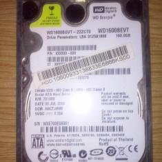 HDD Western Digital 160 gb - HDD laptop Western Digital, 100-199 GB, Rotatii: 5400, SATA, 8 MB