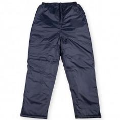PANTALONI IARNA IMPERMEABILI CAPTUSITI - Pantaloni barbati, Marime: XL, Culoare: Bleumarin