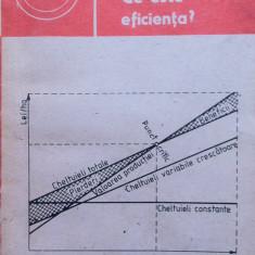 CE ESTE EFICIENTA - Ion Camasoiu, Camelia Camasoiu - Carte dezvoltare personala