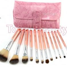 Trusa pensule machiaj profesionale 12 pensule Pink Premium Fraulein Germania - Pensula machiaj