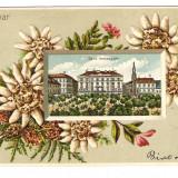 879a. Timisoara - inedit