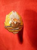 Insigna militara de boneta -TR-isti , h= 2,8 cm