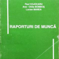 RAPORTURI DE MUNCA - Paul Cojocaru, Ana Otilia Bombos, Lucian Manea - Carte Legislatie