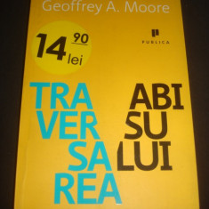 GEOFFREY A. MOORE - TRAVERSAREA ABISULUI {2009}
